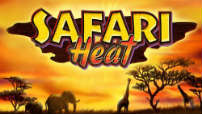 safari_heat
