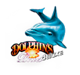Dolphins pearl Deluxe HD